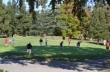 Golfers putting.